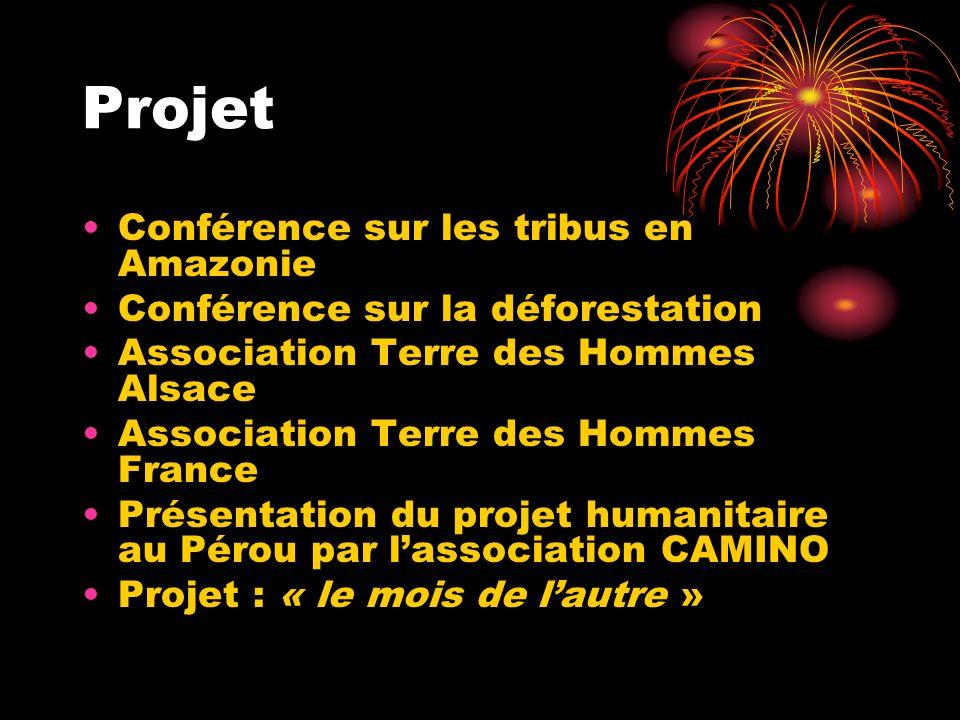 Projet Conférence sur les tribus en Amazonie Conférence sur la déforestation Association Terre des Hommes Alsace Association Terre des Hommes France Présentation du projet humanitaire au Pérou par lassociation CAMINO Projet : « le mois de lautre »