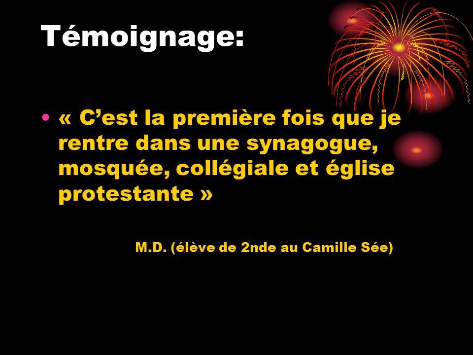 Témoignage: « Cest la première fois que je rentre dans une synagogue, mosquée, collégiale et église protestante » M.D. (élève de 2nde au Camille Sée)