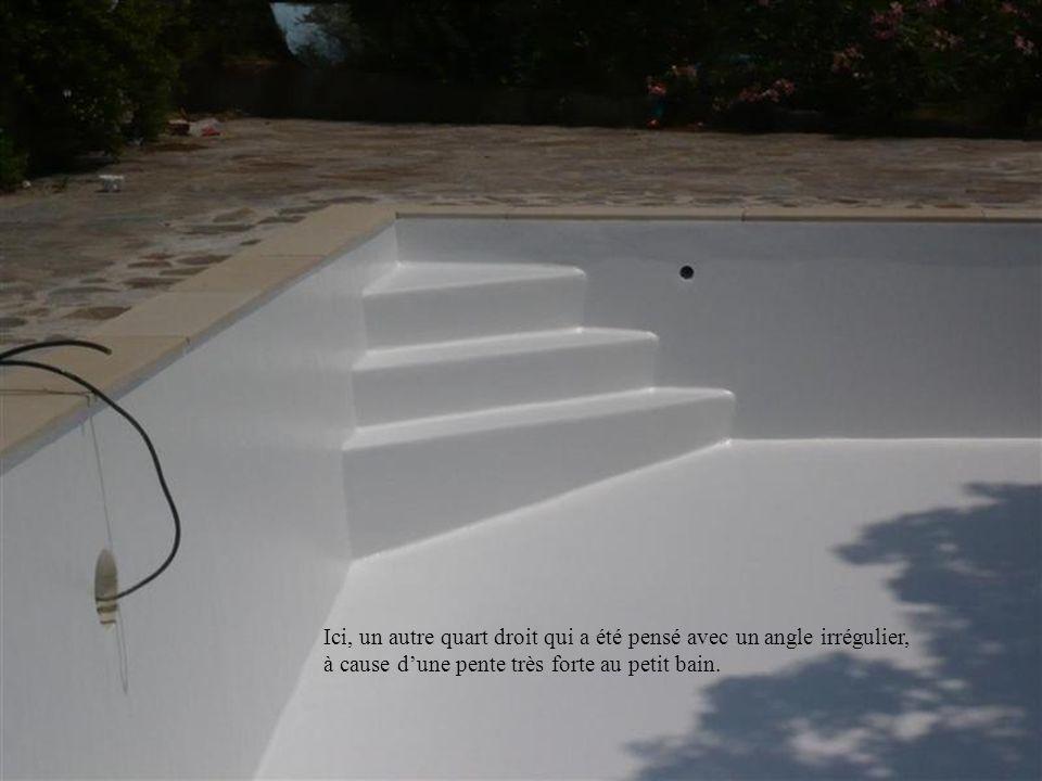 La forme de lescalier dépend aussi de la finalité des formes de la piscine. Il faut aussi penser « intégration ».
