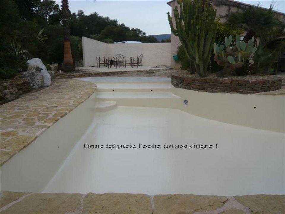 Celui-ci, facile à réaliser, sadapte parfaitement à un grand bassin. Il est aussi possible den mettre un de chaque côté.