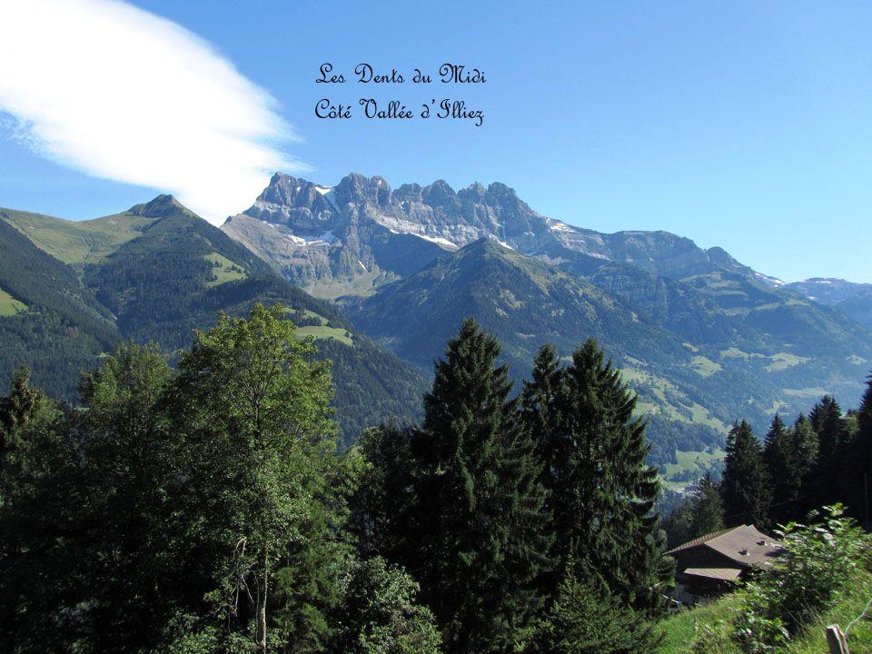 Les Dents du Midi Côté Sud, depuis Salanfe