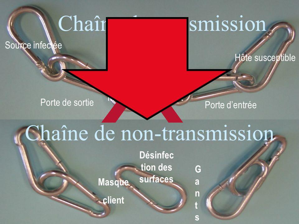 13 Source infectée Porte de sortie Médium de transport Porte dentrée Hôte susceptible Chaîne de transmission Chaîne de non-transmission GantsGants Mas