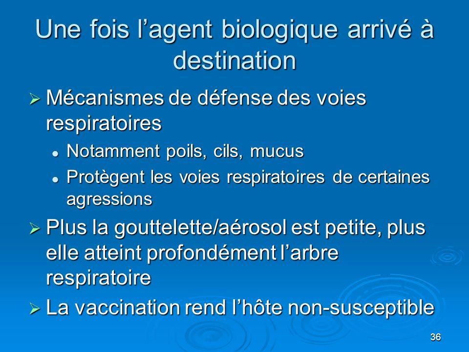 36 Une fois lagent biologique arrivé à destination Mécanismes de défense des voies respiratoires Mécanismes de défense des voies respiratoires Notamment poils, cils, mucus Notamment poils, cils, mucus Protègent les voies respiratoires de certaines agressions Protègent les voies respiratoires de certaines agressions Plus la gouttelette/aérosol est petite, plus elle atteint profondément larbre respiratoire Plus la gouttelette/aérosol est petite, plus elle atteint profondément larbre respiratoire La vaccination rend lhôte non-susceptible La vaccination rend lhôte non-susceptible