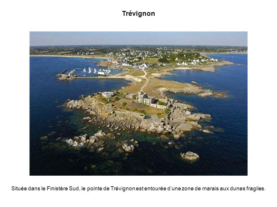 Pléneuf Val André Pléneuf Val André figure parmi les principaux centres touristiques des Côtes dArmor. Ici, le petit port traditionnel de Dahouët.