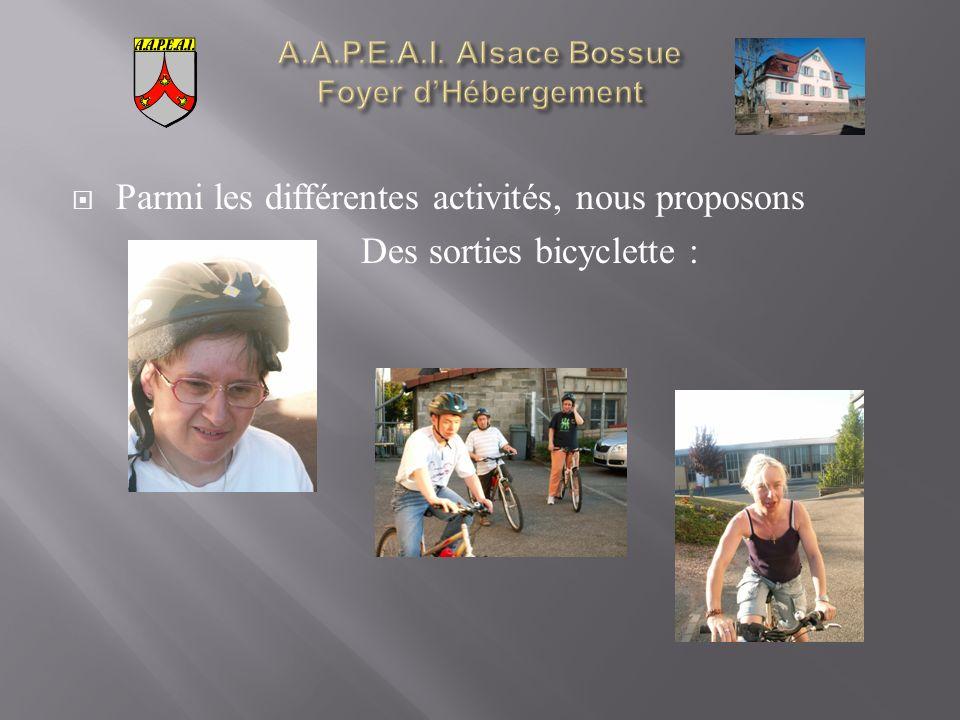 Parmi les différentes activités, nous proposons Des sorties bicyclette :