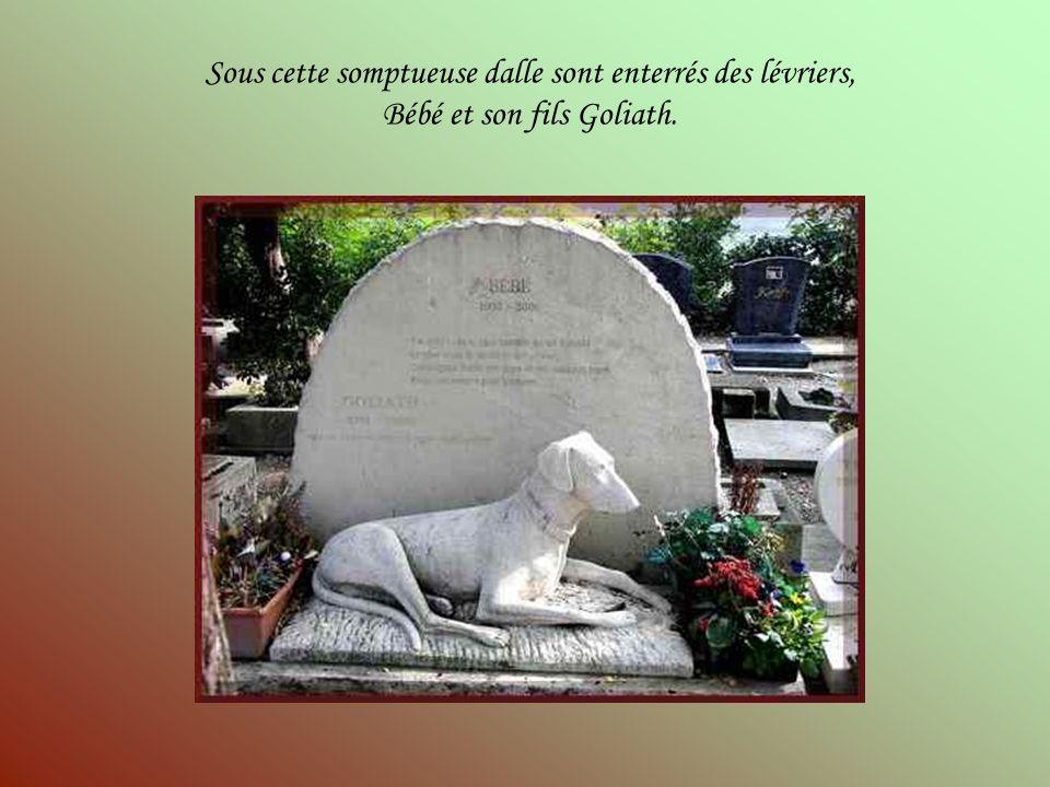 La tombe du célèbre Rintintin. Rintintin, berger allemand, est né en Lorraine (région est de la France) en 1918. Lee Duncan, un GI américain recueille