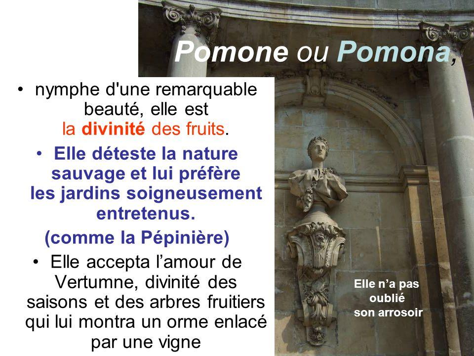Dionysos Dionysos = Bacchus chez les Romains Il est le fils de Zeus et de la mortelle Sémélé.
