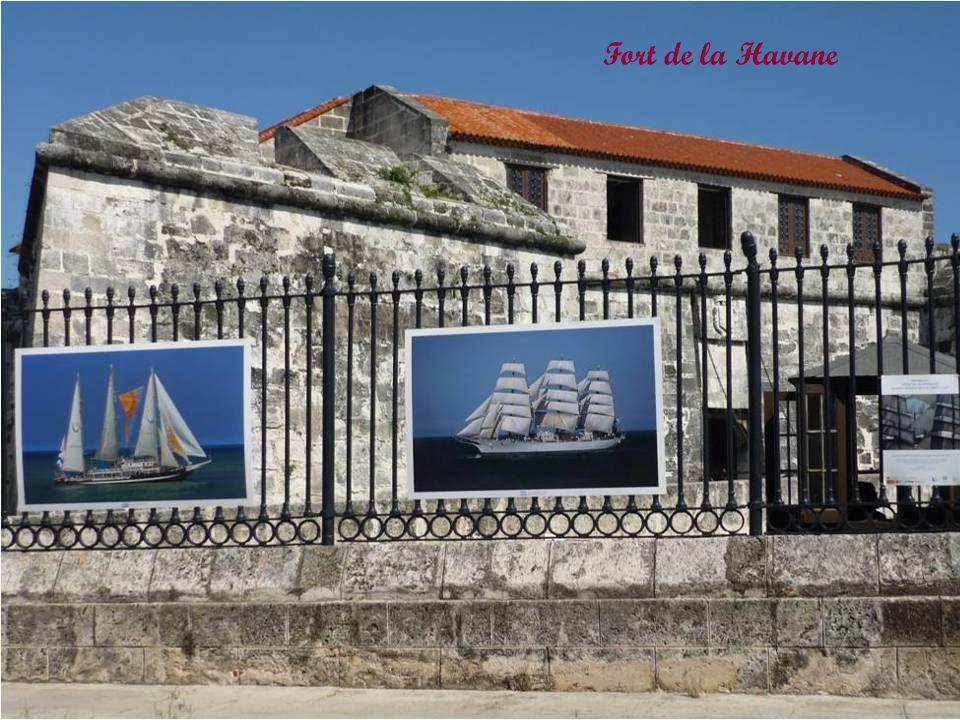 À lorigine la Havane est un port de commerce. La Havane devint le premier port du Continent. Vous venez pour la douceur du climat Subtropical et ses r