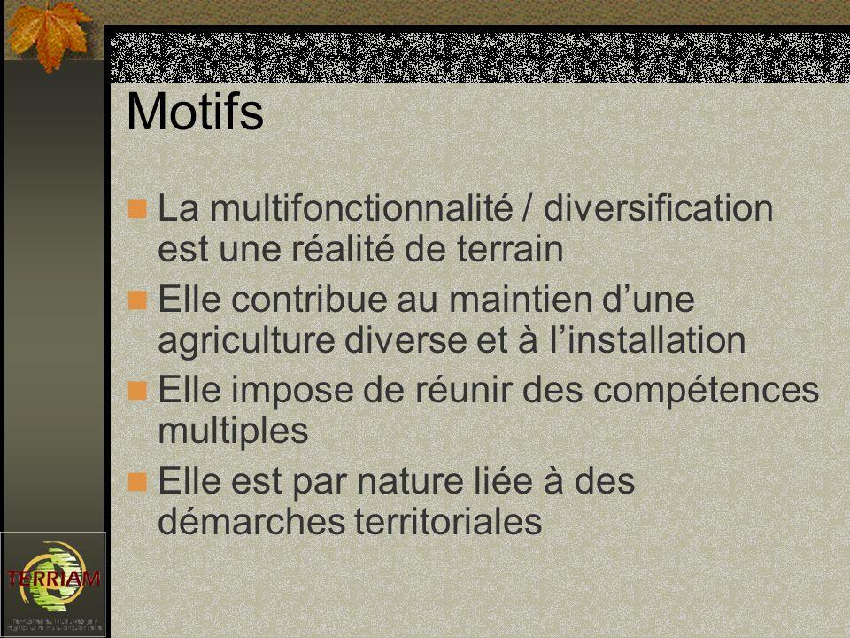 Motifs La multifonctionnalité / diversification est une réalité de terrain Elle contribue au maintien dune agriculture diverse et à linstallation Elle impose de réunir des compétences multiples Elle est par nature liée à des démarches territoriales