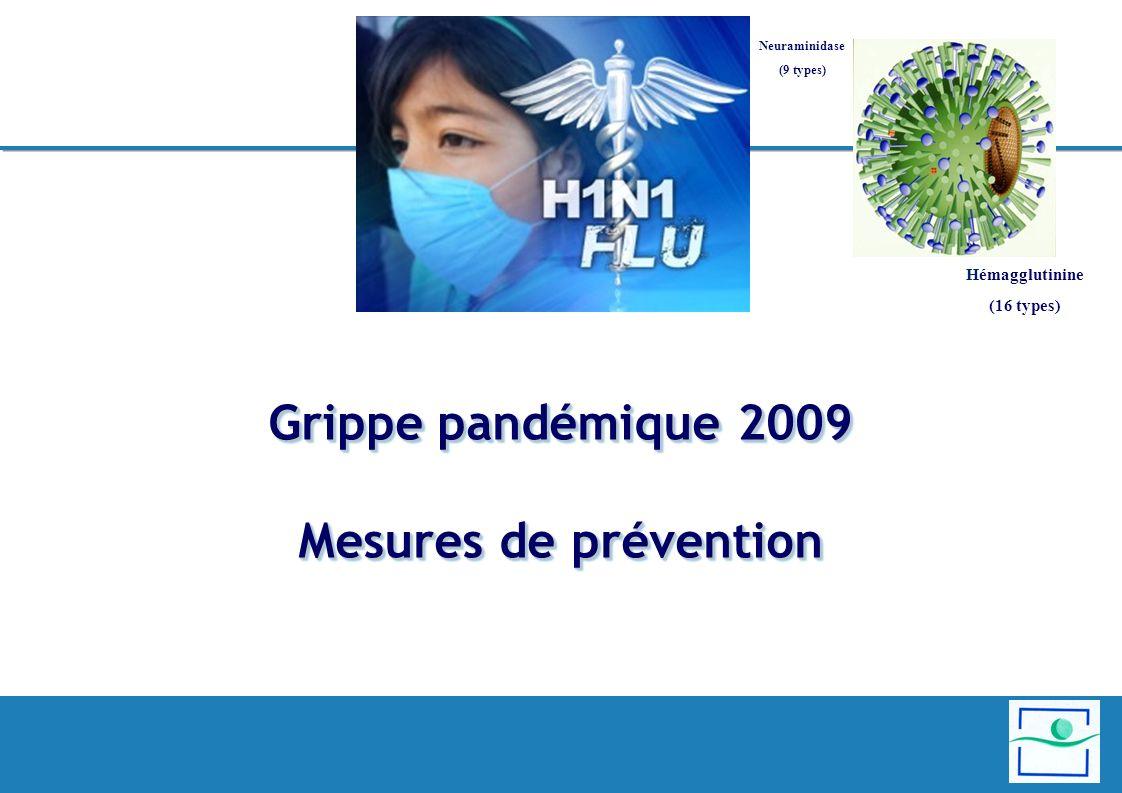 Grippe pandémique 2009 Mesures de prévention Hémagglutinine (16 types) Neuraminidase (9 types)