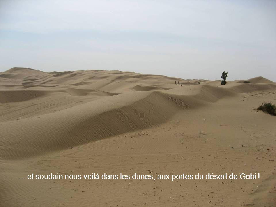 … et soudain nous voilà dans les dunes, aux portes du désert de Gobi !