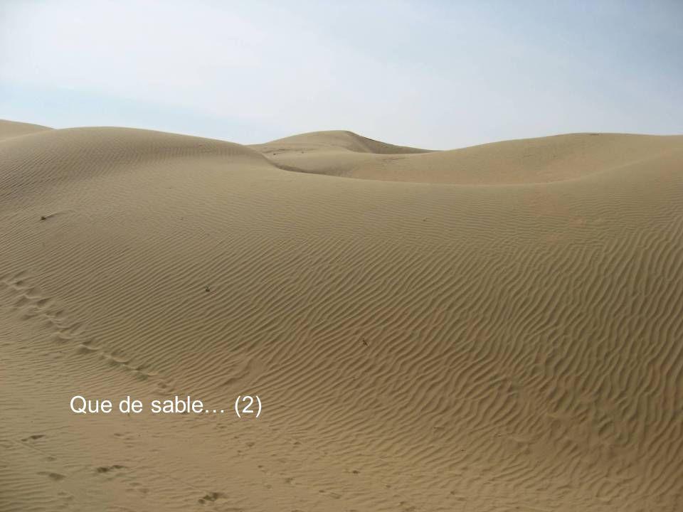 Que de sable… (2)