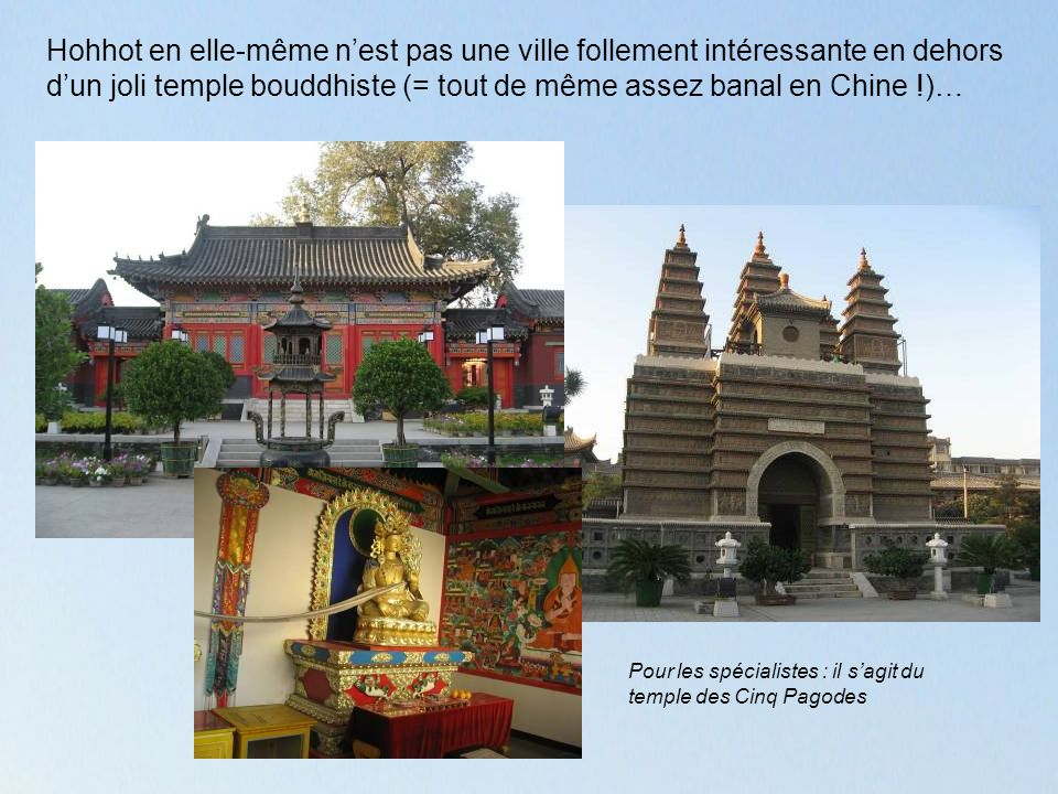 Hohhot en elle-même nest pas une ville follement intéressante en dehors dun joli temple bouddhiste (= tout de même assez banal en Chine !)… Pour les spécialistes : il sagit du temple des Cinq Pagodes