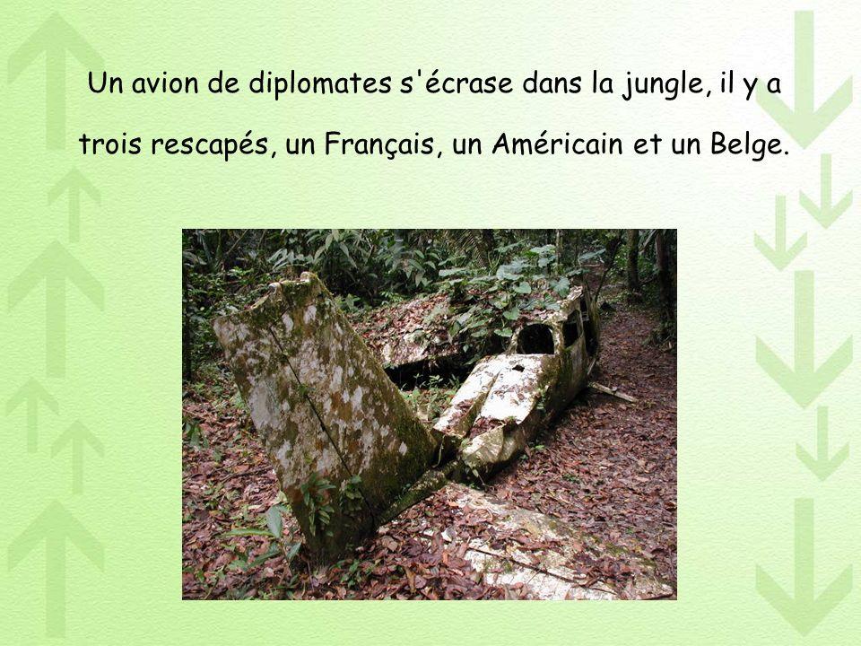 Un avion de diplomates s'écrase dans la jungle, il y a trois rescapés, un Français, un Américain et un Belge.