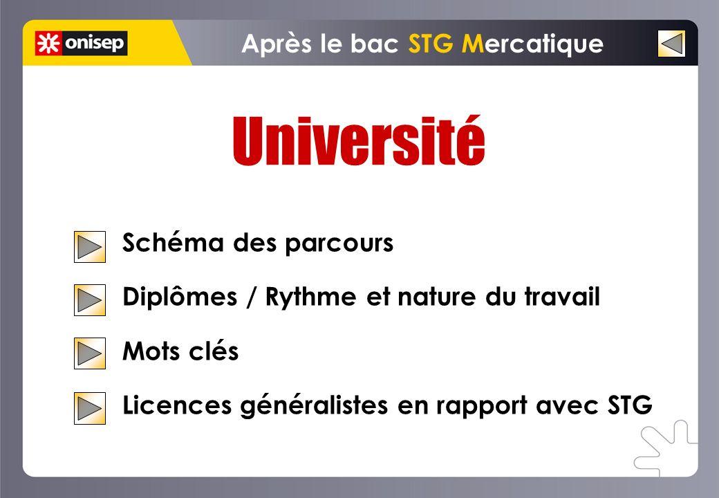Université Schéma des parcours Diplômes / Rythme et nature du travail Mots clés Licences généralistes en rapport avec STG Après le bac STG Mercatique