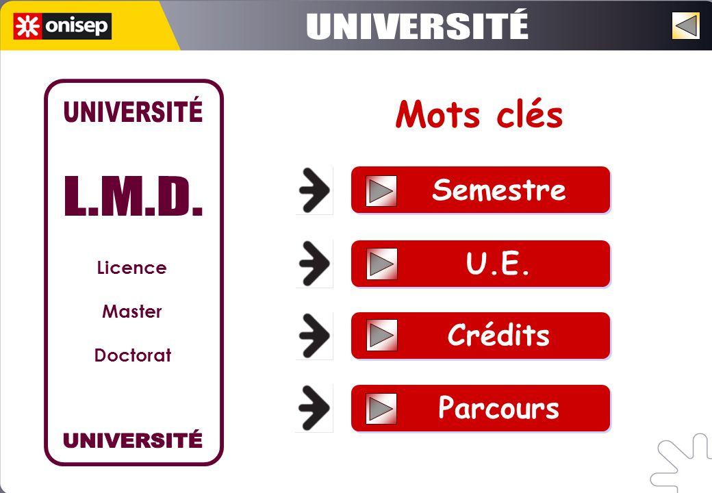 Semestre U.E. Crédits Parcours Mots clés Licence Master Doctorat