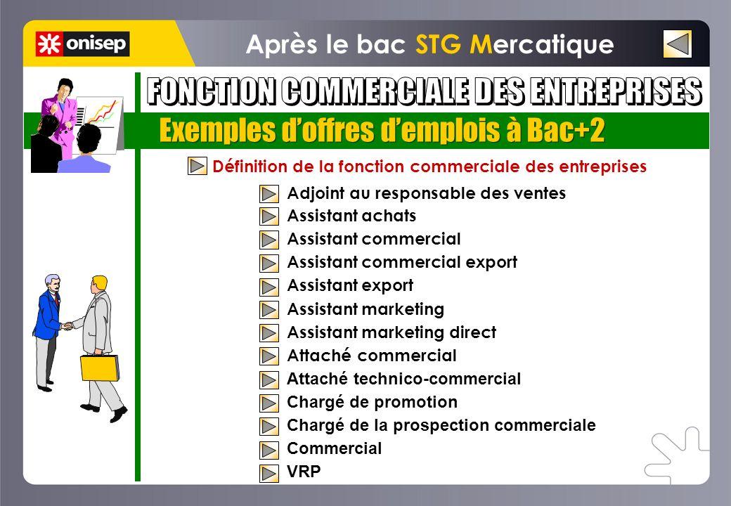 Exemples doffres demplois à Bac+2 Définition de la fonction commerciale des entreprises Adjoint au responsable des ventes Assistant achats Assistant c