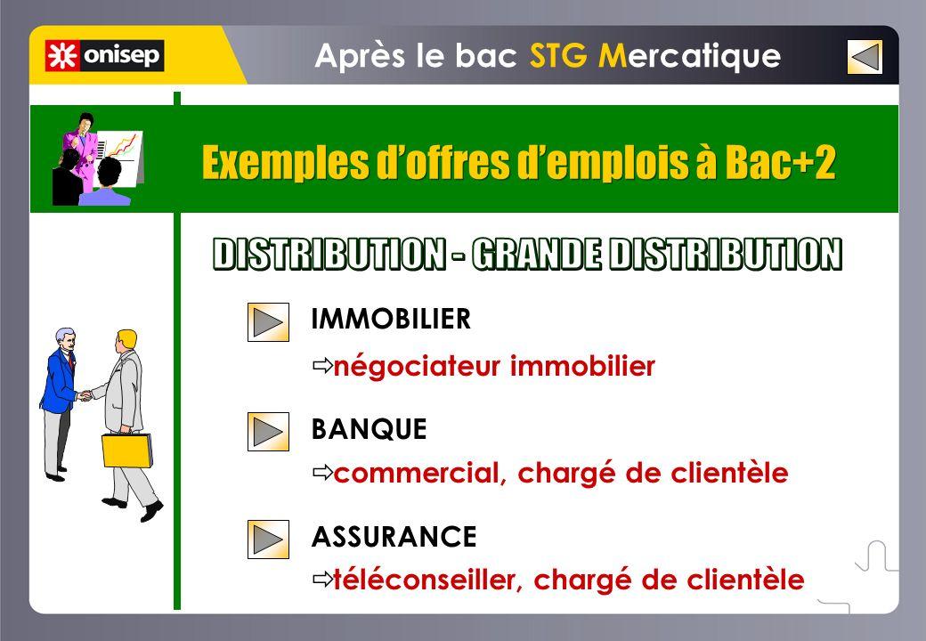 Exemples doffres demplois à Bac+2 Après le bac STG Mercatique IMMOBILIER négociateur immobilier BANQUE commercial, chargé de clientèle ASSURANCE téléc