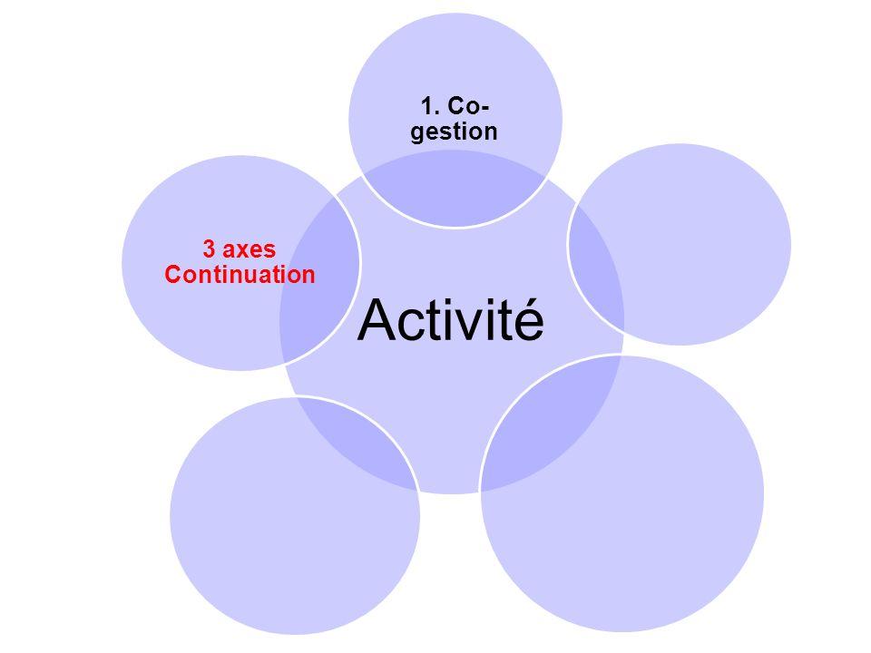Activité 1. Co- gestion 3 axes Continuation