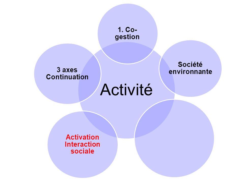 Activité 1. Co- gestion Société environnante Activation Interaction sociale 3 axes Continuation