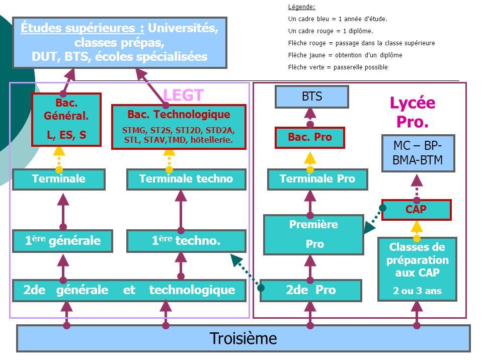 Troisième 2de générale et technologique 1 ère générale1 ère techno. Terminale Bac. Général. L, ES, S Terminale techno Bac. Technologique STMG, ST2S, S