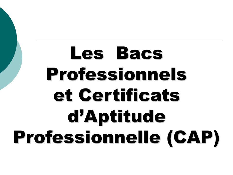Les Bacs Professionnels et Certificats dAptitude Professionnelle (CAP)
