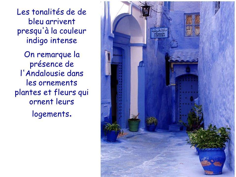 Les tonalités de de bleu arrivent presqu à la couleur indigo intense On remarque la présence de l Andalousie dans les ornements plantes et fleurs qui ornent leurs logements.