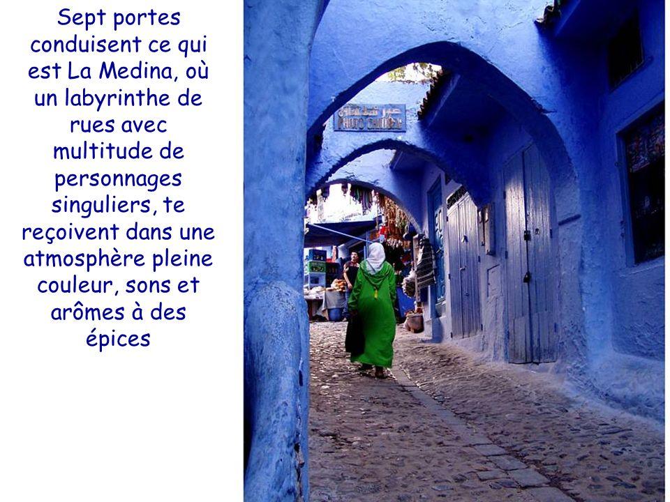 Sept portes conduisent ce qui est La Medina, où un labyrinthe de rues avec multitude de personnages singuliers, te reçoivent dans une atmosphère pleine couleur, sons et arômes à des épices