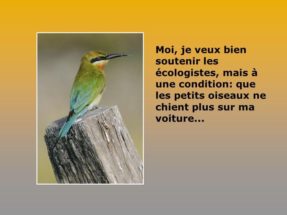 Paris sera bientôt la seule ville au monde où, au réveil, on pourra entendre les petits oiseaux tousser.