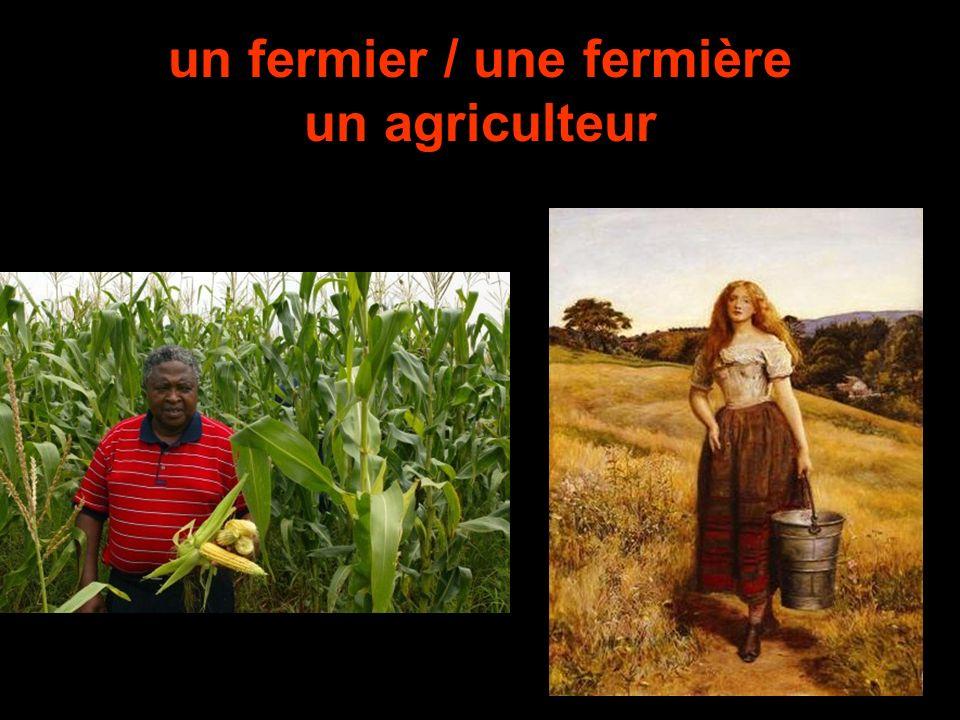 un fermier / une fermière un agriculteur