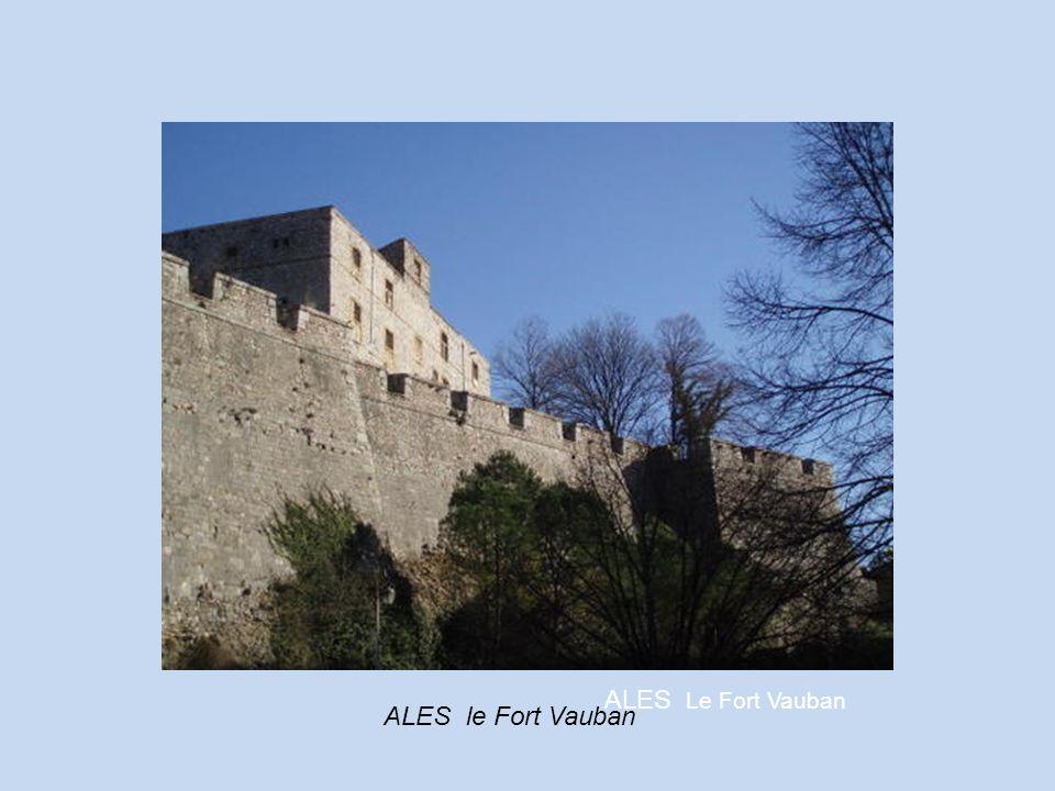 AIGUES MORTES Ville fortifiée 8° siècle Proche des salines Porte de la Camargue La Tour Constance et le port