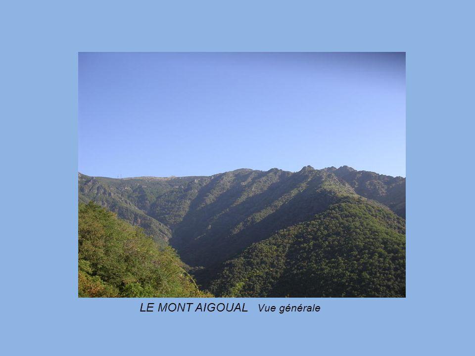 BARJAC aux portes de l Ardèche