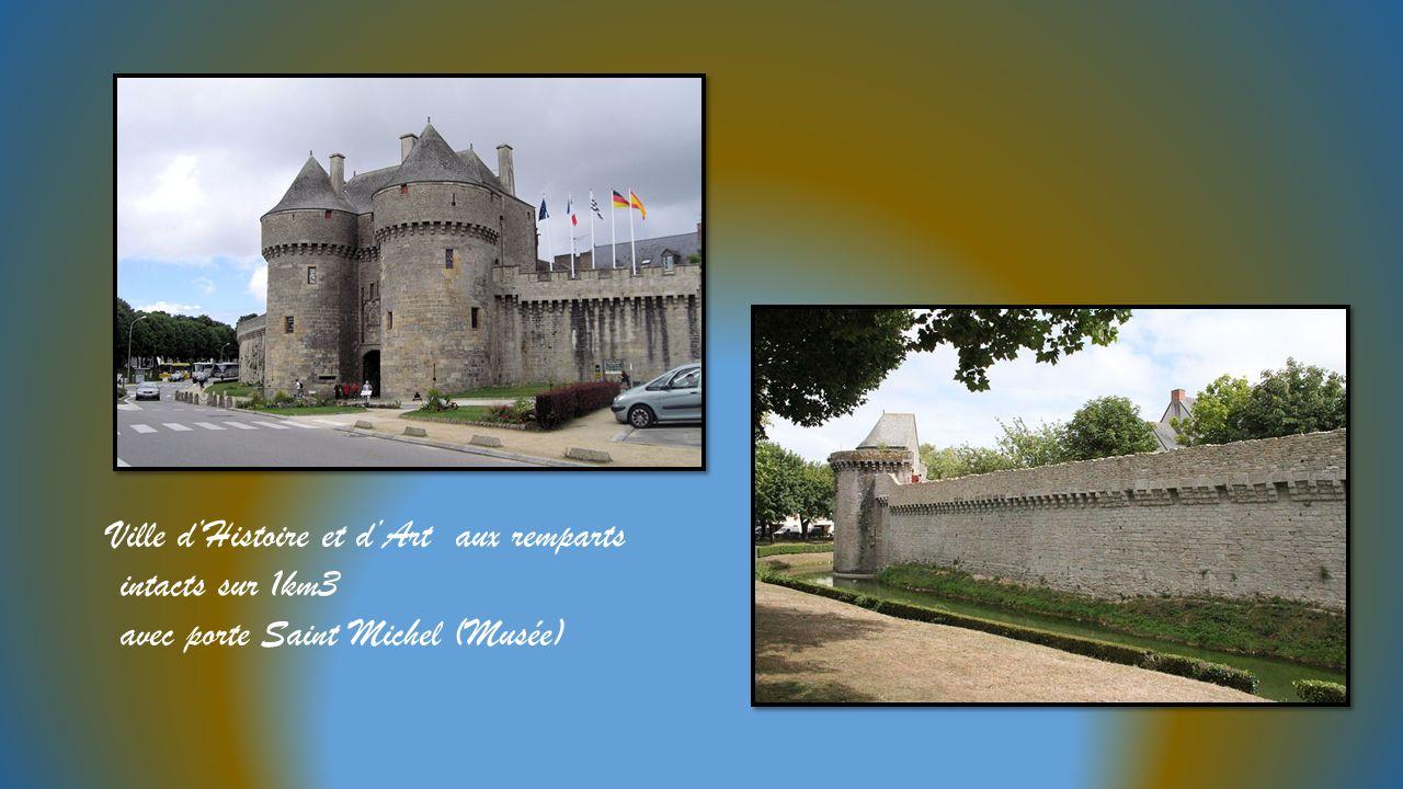 Ville dHistoire et dArt aux remparts intacts sur 1km3 avec porte Saint Michel (Musée)