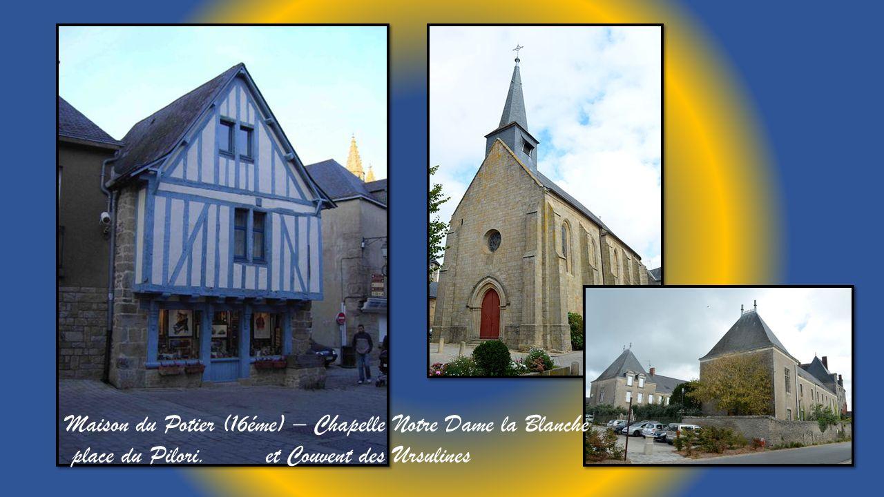 Collégiale Saint Aubin (12 au 16éme siècle) en centre médiéval, clocher en ardoise. Vitrail et voutes de la nef.