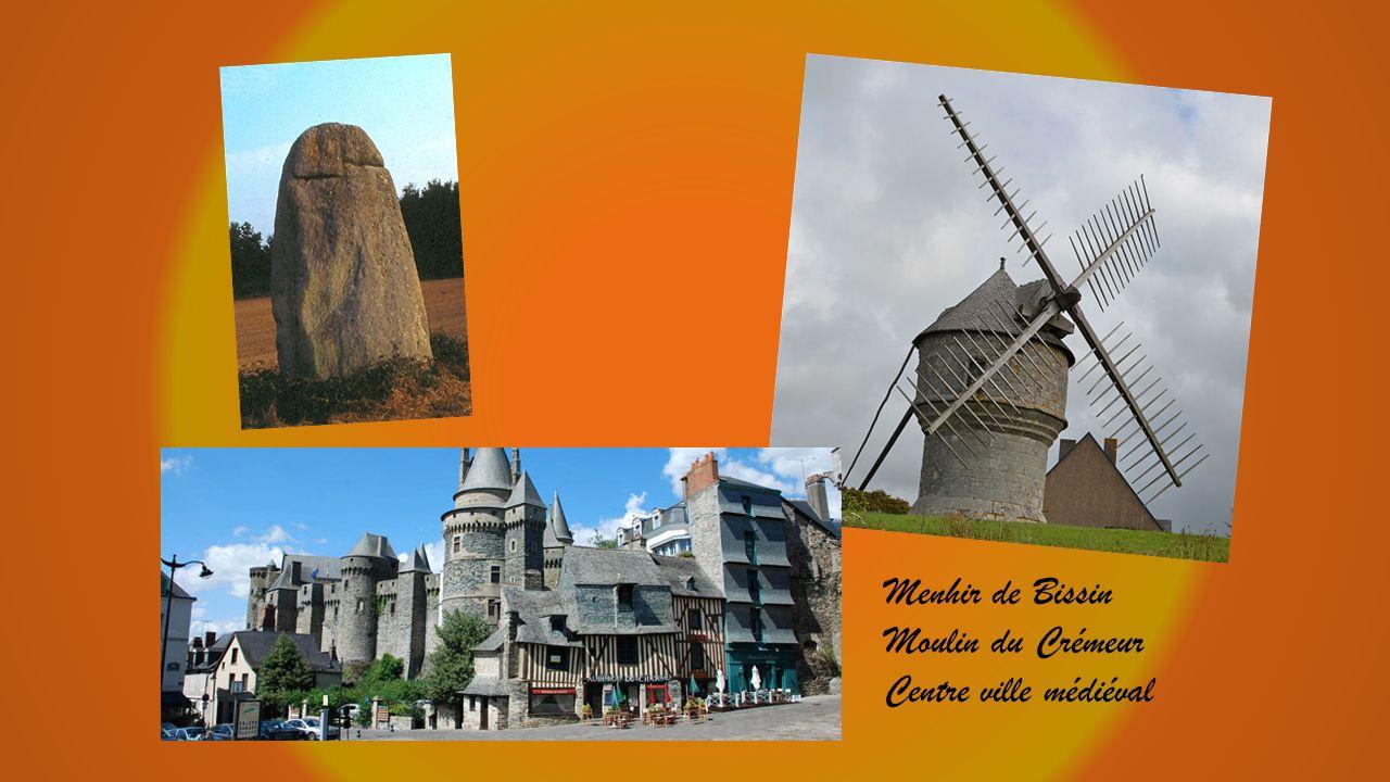 Menhir de Bissin Moulin du Crémeur Centre ville médiéval