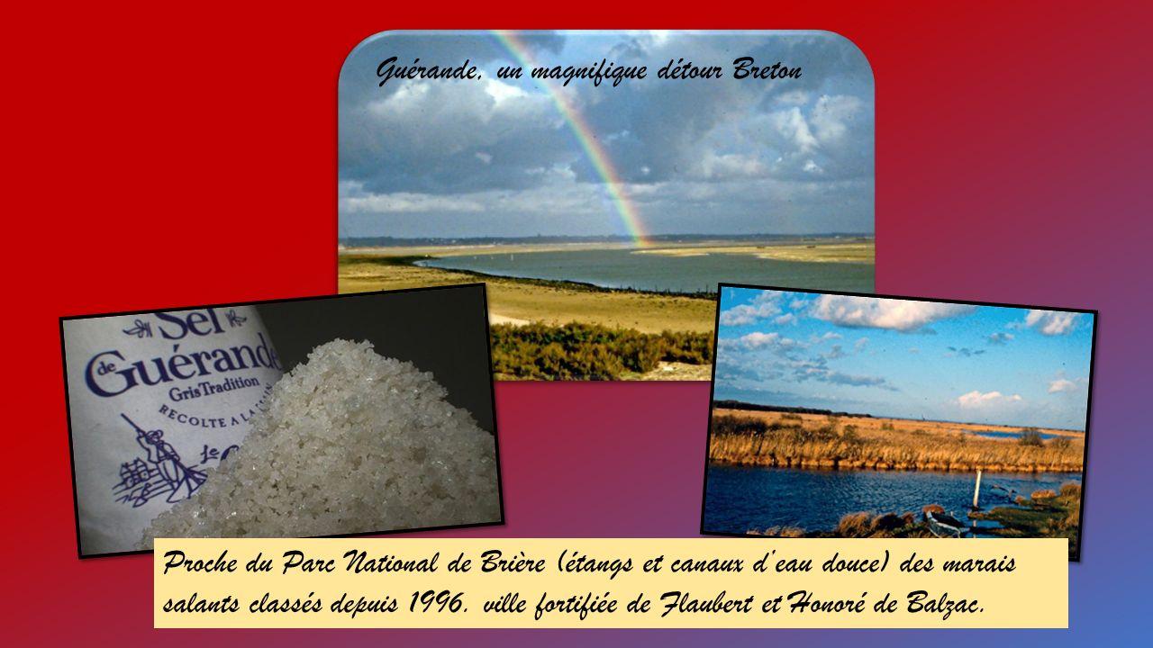 Proche du Parc National de Brière (étangs et canaux deau douce) des marais salants classés depuis 1996.