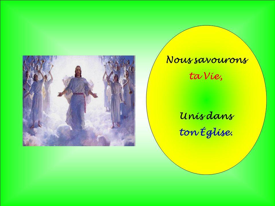 .. Emportés par la brise Des mots de lÉvangile