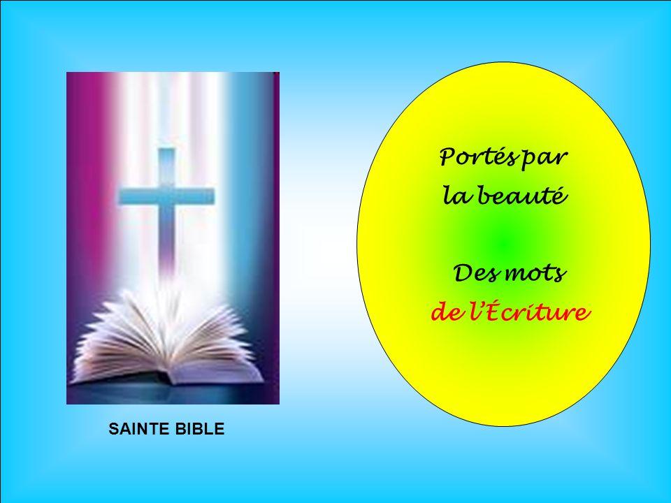 .. SAINTE BIBLE Portés par la beauté Des mots de lÉcriture