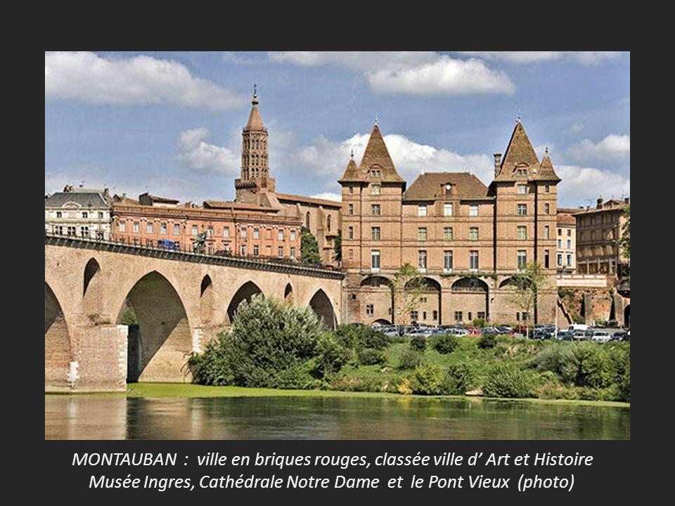 MONTAUBAN : ville en briques rouges, classée ville d Art et Histoire Musée Ingres, Cathédrale Notre Dame et le Pont Vieux (photo)