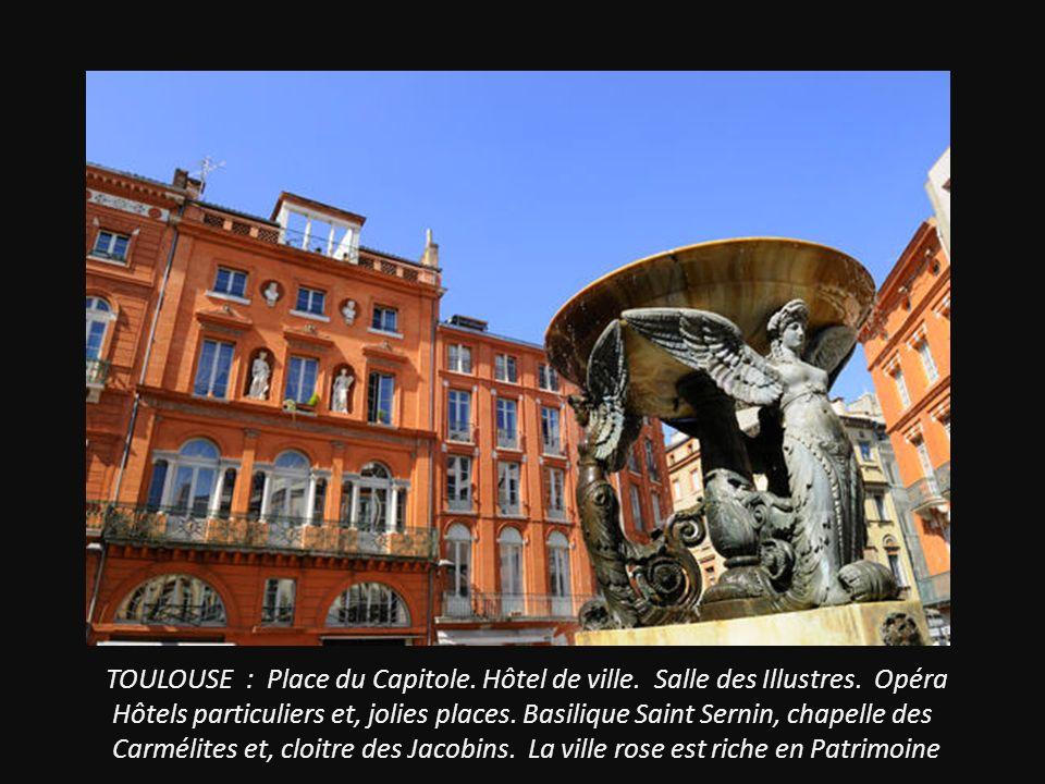 TOULOUSE : Place du Capitole.Hôtel de ville. Salle des Illustres.