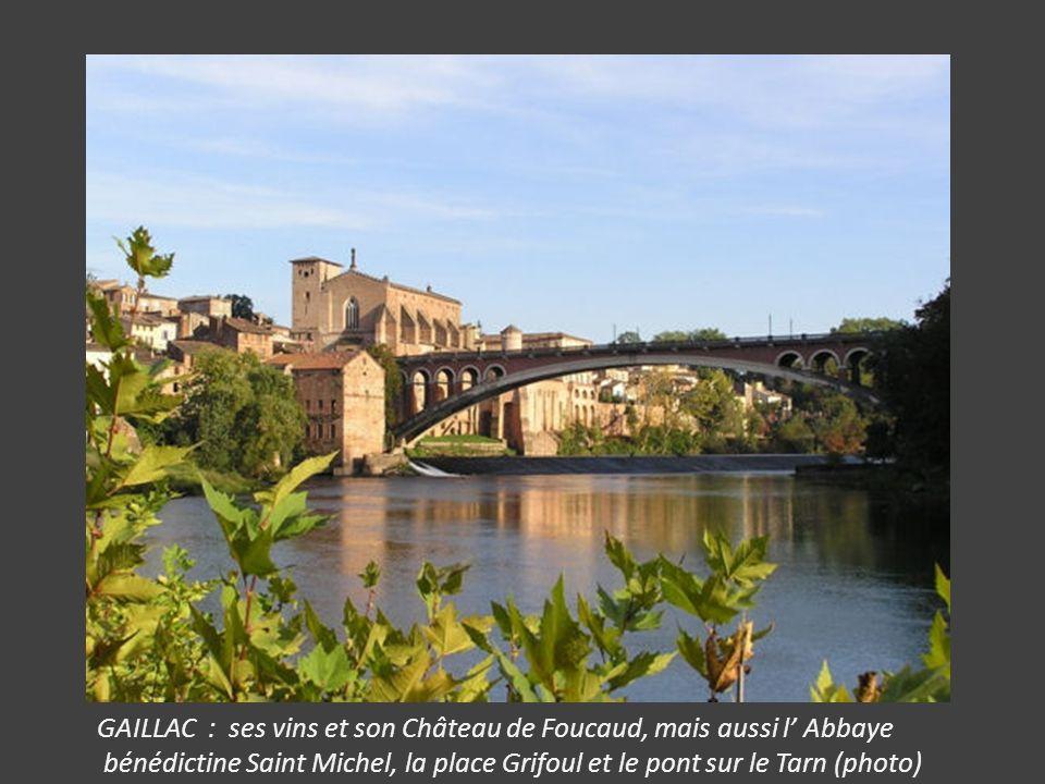 GAILLAC : ses vins et son Château de Foucaud, mais aussi l Abbaye bénédictine Saint Michel, la place Grifoul et le pont sur le Tarn (photo)