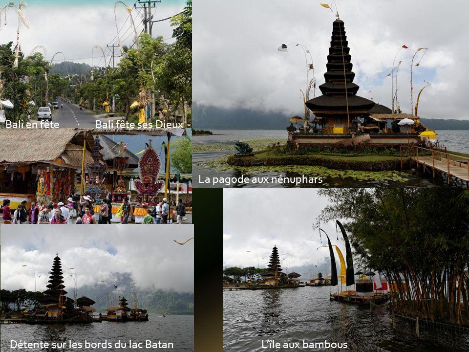 Prés de Pecansari, le lac BRATAN En attendant les touristes, les singes sépanouissent Le chef