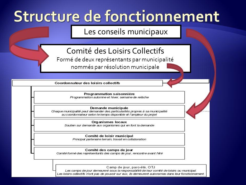 Les conseils municipaux Comité des Loisirs Collectifs Formé de deux représentants par municipalité nommés par résolution municipale