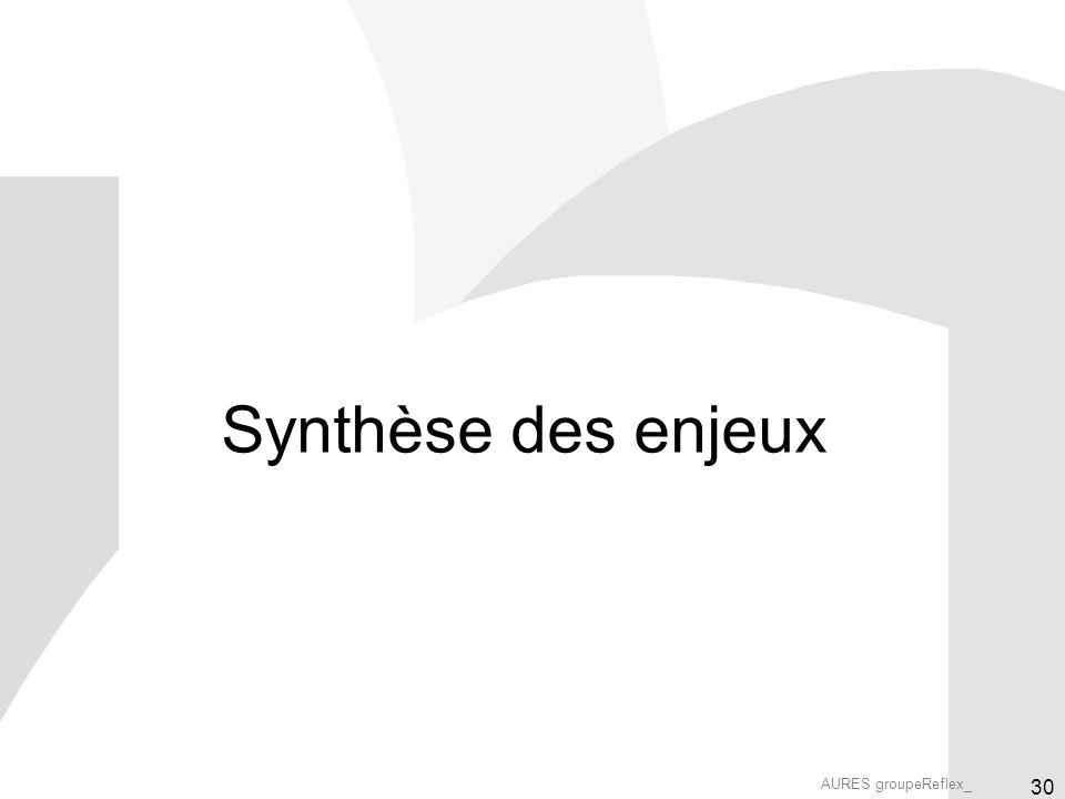 AURES groupeReflex_ 30 Synthèse des enjeux