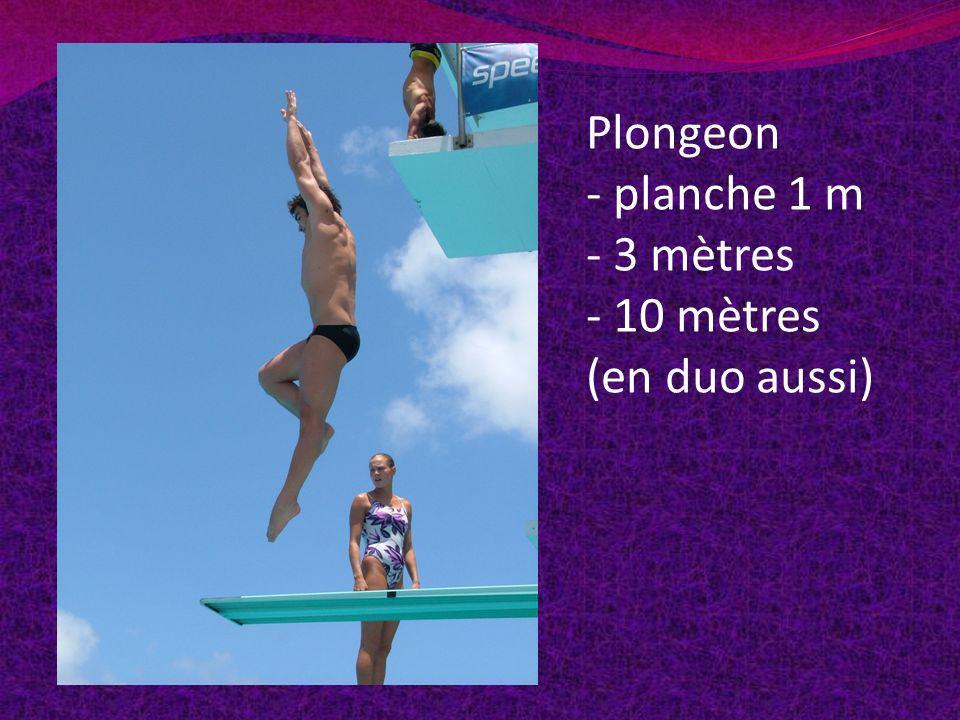 Plongeon - planche 1 m - 3 mètres - 10 mètres (en duo aussi)
