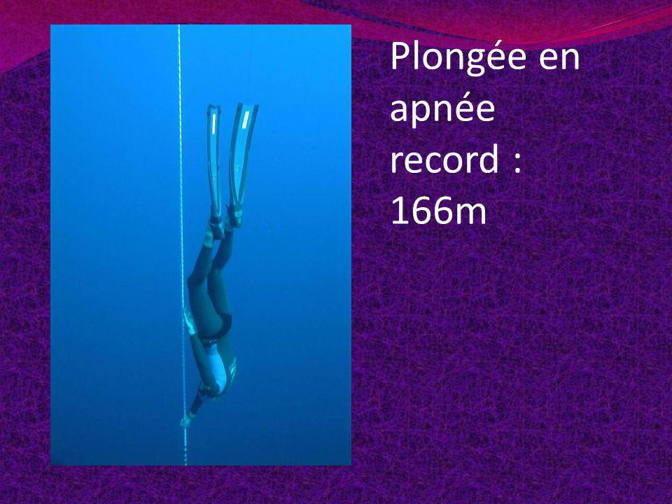 Plongée en apnée record : 166m