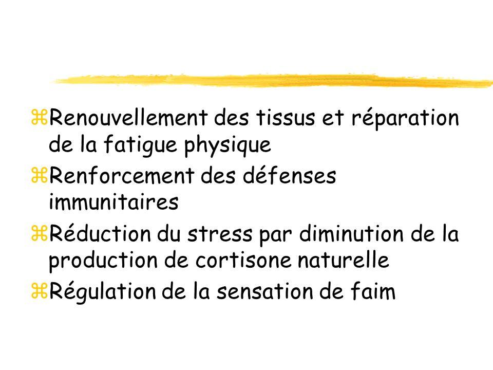 zRenouvellement des tissus et réparation de la fatigue physique zRenforcement des défenses immunitaires zRéduction du stress par diminution de la prod