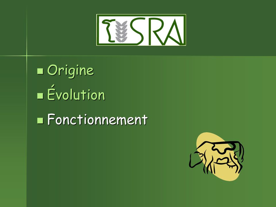 Origine Origine Évolution Évolution Fonctionnement Fonctionnement