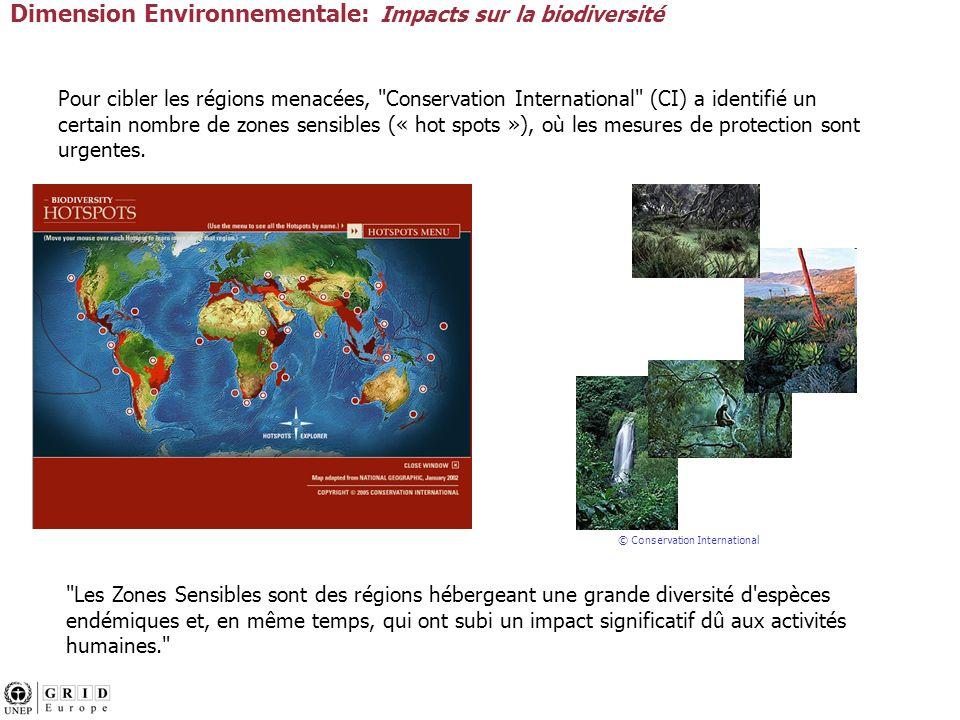 Pour cibler les régions menacées, Conservation International (CI) a identifié un certain nombre de zones sensibles (« hot spots »), où les mesures de protection sont urgentes.
