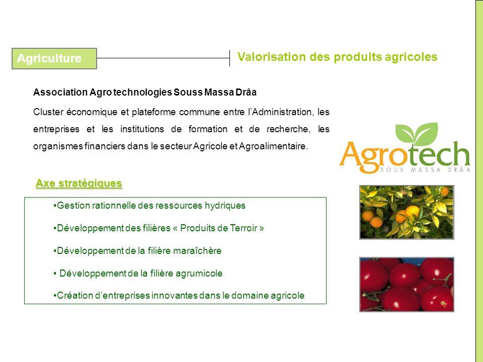 Association Agro technologies Souss Massa Drâa Cluster économique et plateforme commune entre lAdministration, les entreprises et les institutions de